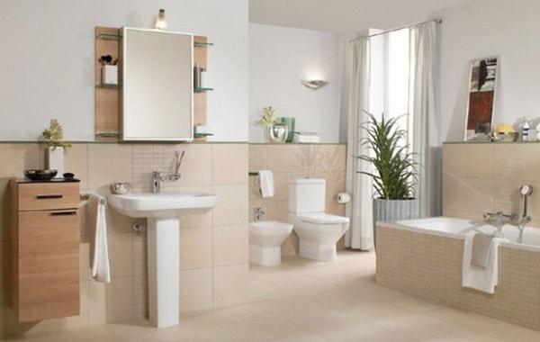 Đặt một chậu cây xanh trong nhà vệ sinh sẽ tốt hơn cho căn nhà
