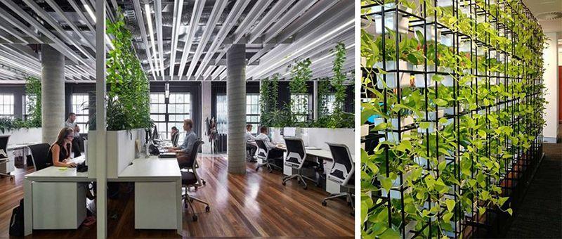Văn phòng xanh tiếp tục được ưa chuộng