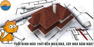Người tuổi Đinh Mão 1987 nên mua nhà, xây nhà năm nào tốt?